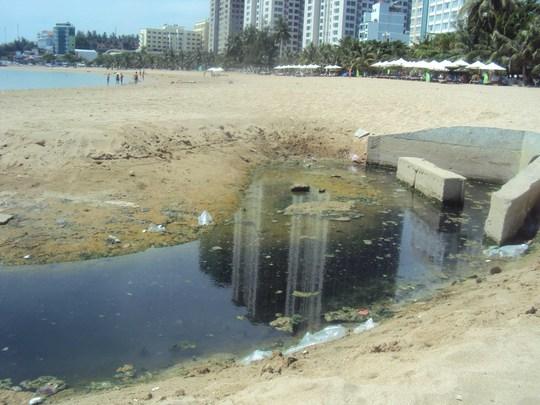 Ô nhiễm bãi biển - Ảnh 1.