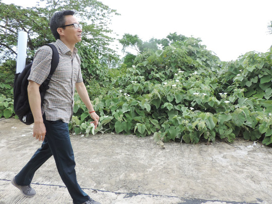Phó Thủ tướng Vũ Đức Đam bất ngờ thị sát Sơn Trà - Ảnh 3.