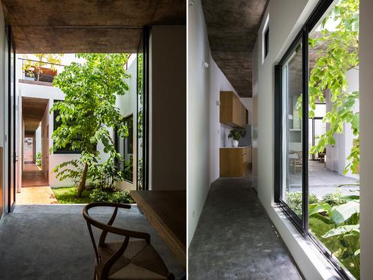 Những lối đi nhỏ kết nối các phòng không bị tẻ nhạt vì luôn ngập tràn ánh nắng và thiên nhiên.