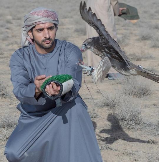 Cũng như những người giàu có khác tại Trung Đông, Fazza cũng có vật nuôi hoang dã, như chim ưng,...