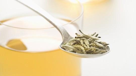 Bạch trà đắt nhất thế giới có gì đặc biệt? - Ảnh 10.