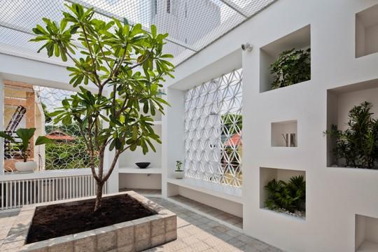 Căn nhà nhiều cửa sổ lạ mắt giống lồng chim giữa con hẻm Sài Gòn - Ảnh 11.