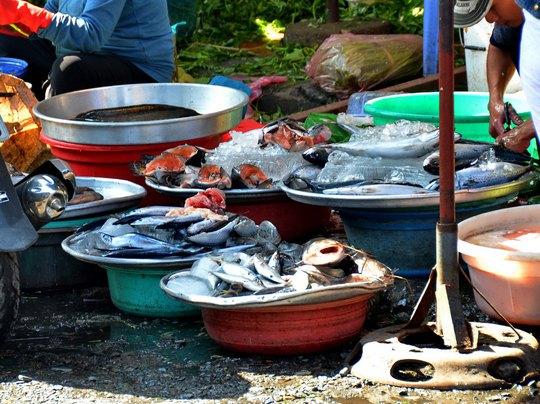 Chất lượng thực phẩm tại nhiều điểm bán lẻ ở TP HCM vẫn chưa được kiểm soát Ảnh: TẤN THẠNH