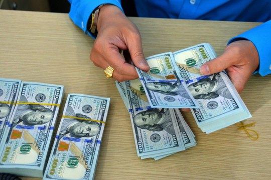 Giá USD đang đứng ở mức cao Ảnh: TẤN THẠNH