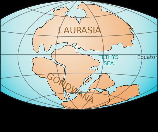 Nam Cực từng là khu rừng xanh tươi - Ảnh 2.