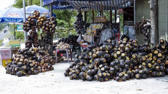 Khách phương xa có thể dễ dàng tìm thấy các sản phẩm làm từ thốt nốt được bày bán ở đây, như: thốt nốt trái, nước thốt nốt, đường thốt nốt...