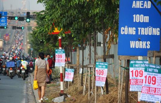 Tương tự, xa lộ Hà Nội cũng thảm hại không kém bởi hầu hết các thân cây, cột điện, biển báo đều được đính kèm băng rôn nhìn hoa cả mắt.