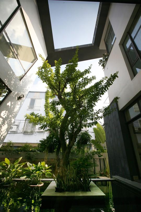 Biệt thự 700 m2 thiết kế tinh tế ở Hà Nội - Ảnh 16.