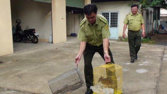 Bắt quả tang vụ buôn bán động vật hoang dã quý hiếm - Ảnh 1.