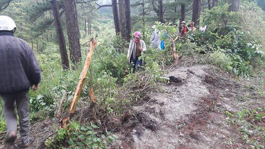 Ô tô 4 chỗ rơi đèo Prenn Đà Lạt, nhiều người bị thương - Ảnh 1.