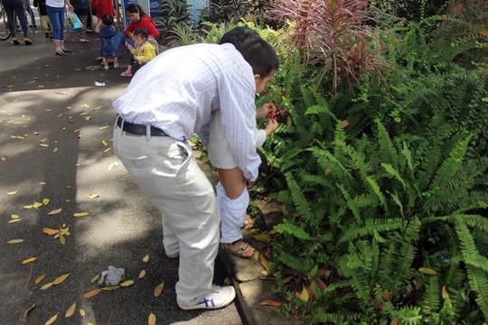 Người đàn ông này cho con đi vệ sinh gần ngay bên đền Hùng khiến nhiều người bức xúc.