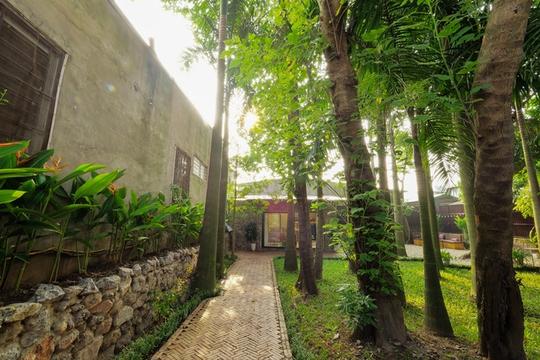 Nhà vườn đầy cây xanh mát ở Hà Nội - Ảnh 2.