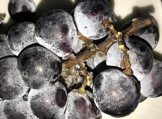 Ăn trái cây ngoại nhập: Tranh mua táo héo, nho rụng, dưa sứt vỏ - Ảnh 2.
