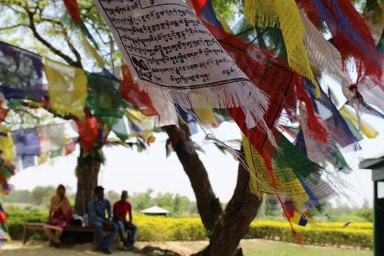 Đi chân đất ở Lumbini - Ảnh 2.