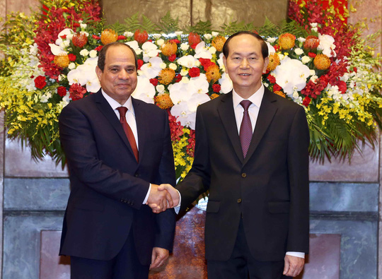 Nâng kim ngạch thương mại VN- Ai Cập lên 1 tỉ USD - Ảnh 1.
