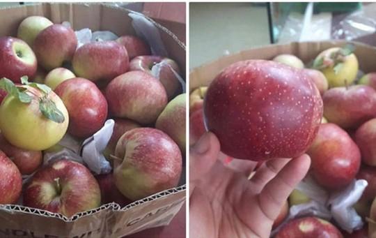 5 loại táo Trung Quốc đang bán đầy chợ Việt, người mua dễ nhầm lẫn - Ảnh 2.