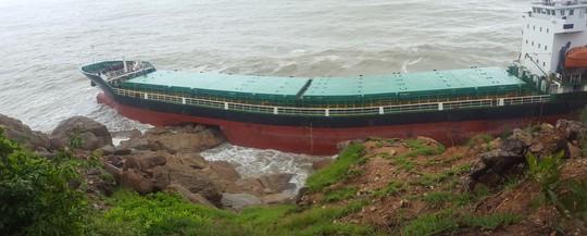 Phú Yên, Bình Định phản ứng về dự báo bão số 12 - Ảnh 3.