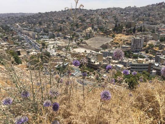 Amman - Sự quyến rũ bí ẩn giữa Trung Đông - Ảnh 3.