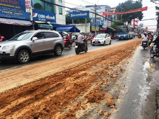 Kinh hãi với bùn nhão đầy đường ở TP HCM - Ảnh 2.