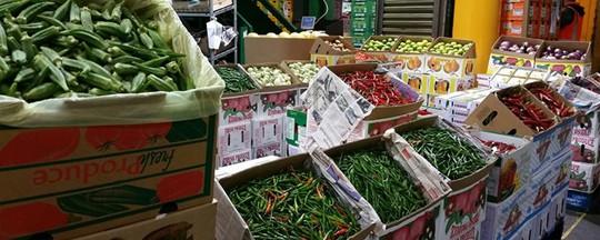 Người Việt làm giàu bằng nghề nông trên đất Úc - Ảnh 1.