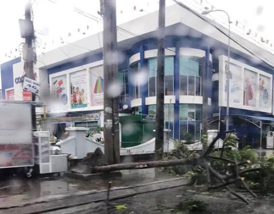 Gần 50 năm sống ở Nha Trang mới thấm thía bão - Ảnh 15.