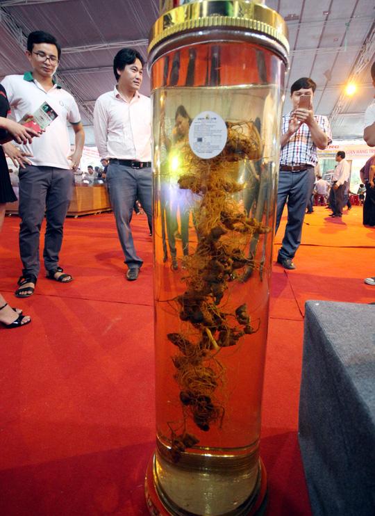 Bán được củ sâm giá 120 triệu đồng tại lễ hội sâm Ngọc Linh - Ảnh 8.
