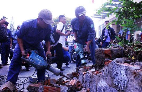 Tương tự, bồn cây bị phá dỡ, cây sứ hàng chục tuổi cũng bị kéo đổ, giải tỏa cho vỉa hè thông thoáng.