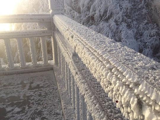 Cận cảnh đỉnh Fansipan trắng xóa trong băng tuyết - Ảnh 3.