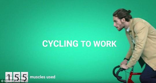 Đạp xe đứng đầu bảng trong các hoạt động thể dục thông thường, cần huy động đến 155 cơ bắp, nhiều hơn chạy bộ đến 56 cơ bắp
