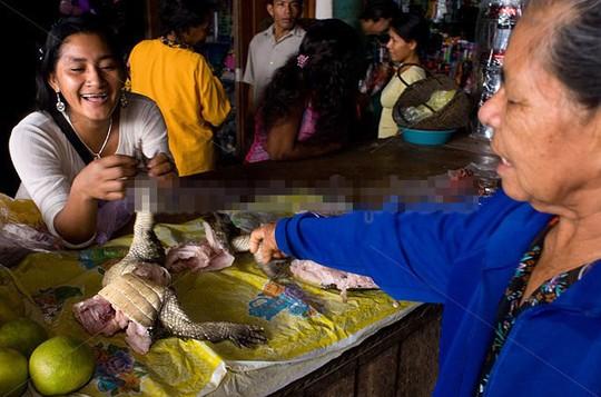 """Vì sao thịt cá sấu """"cháy hàng"""" ở Thái Lan? - Ảnh 4."""