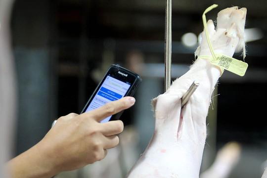 TP HCM: Thịt heo không rõ nguồn gốc đầy chợ đầu mối! - Ảnh 5.
