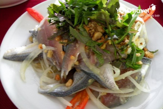 """Sự thật về loài cá nghéo, mệnh danh """"thủy quái"""" biển Đông - Ảnh 4."""