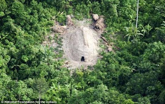 Vụ thảm sát chấn động sông Amazon, cư dân bộ lạc bị chặt xác ném sông - Ảnh 2.
