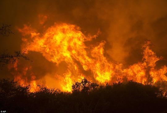 Cháy rừng ở California dữ dội nhất trong lịch sử - Ảnh 1.