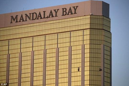 Đem não kẻ thảm sát Las Vegas đi phân tích - Ảnh 1.