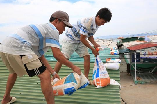 Ninh Thuận – Bình Thuận khẩn trương ứng phó với bão số 14 - Ảnh 2.