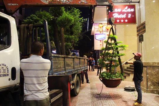 Trên đường Thủ Khoa Huân, phát hiện 6 chậu cây cảnh lớn có giá trị đặt lấn chiếm vỉa hè trước 3 khách sạn 3 sao: A & Em, Blue Diamond, Lan Lan,... ông Hải chỉ đạo đưa về trự sở cơ quan chức năng.