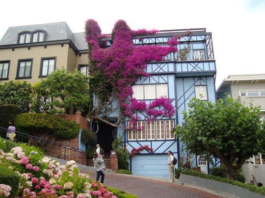 Tiếc thật khi phải xem cảnh này qua ảnh (Một căn nhà xinh xắn trên đường Lombard Street - Ảnh: flickr)