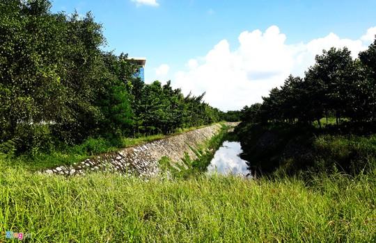 Thành phố 1.000 ha nhiều năm hoang vắng ở Bình Dương - Ảnh 5.