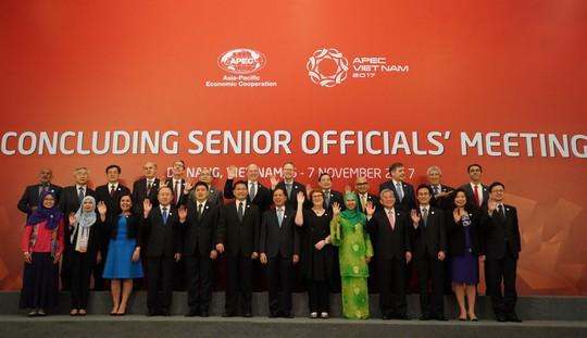 APEC 2017: Tự do hóa thương mại mạnh mẽ hơn - Ảnh 1.