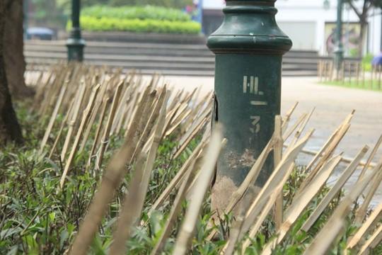 Khuôn viên vườn hoa gần Nhà hát Lớn cắm nhiều cọc tre sắc nhọn khiến nhiều người dân tỏ ra lo ngại