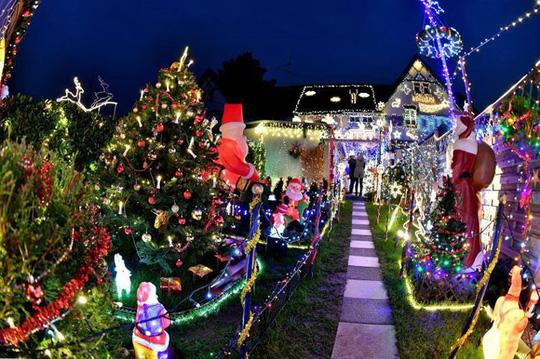 Chi gần 5 tỷ đồng thắp sáng 530.000 đèn Giáng sinh - Ảnh 7.