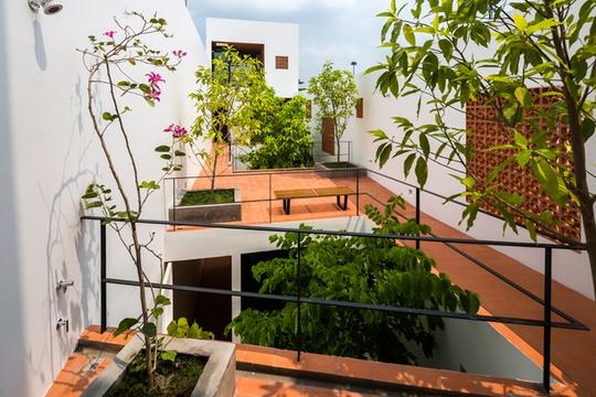 Những khoảng thông tầng trồng cây giúp cho màu xanh lan tỏa khắp không gian của căn nhà ống.