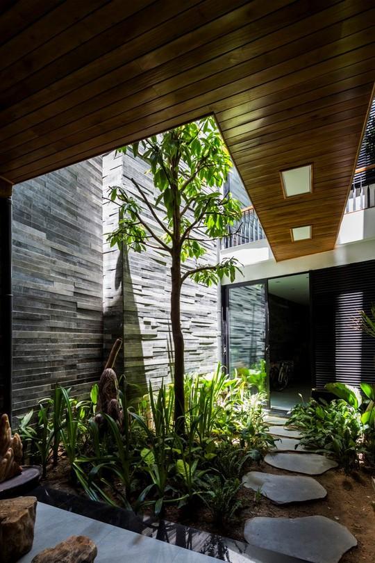 Căn nhà tự 'biết thở' độc đáo ở Đà Nẵng
