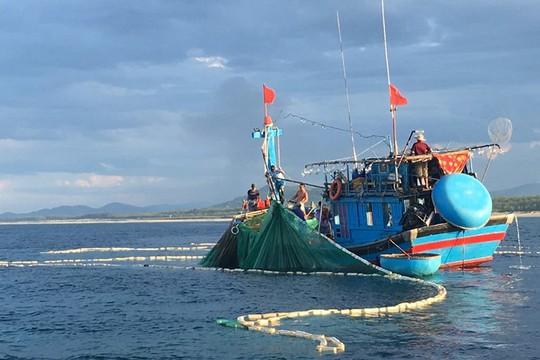 Săn cá nhồng, cá trích giữa biển đêm - Ảnh 1.
