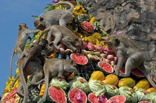 Những lễ hội kỳ quặc nhưng hút khách khắp hành tinh - Ảnh 8.