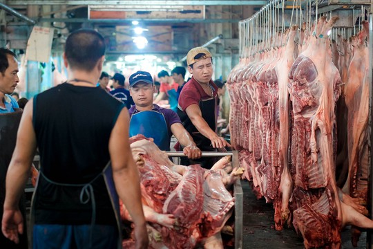 TP HCM: Thịt heo không rõ nguồn gốc đầy chợ đầu mối! - Ảnh 10.