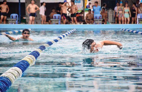 Tổ chức giải bơi lội CNVC-LĐ - Ảnh 1.