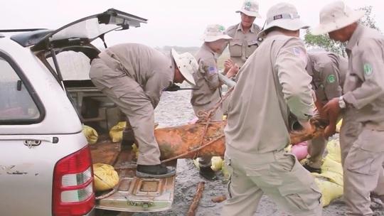 Đội rà phá bom mìn lưu động thuộc Tổ chức Renew Quảng Trị vận chuyển quả bom đến vị trí an toàn để hủy nổ