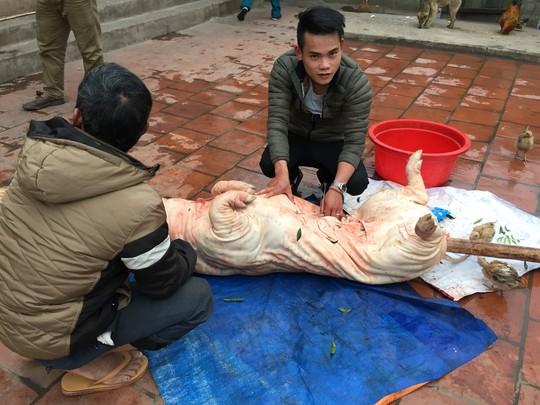 Lợn quay xứ Lạng – đặc sản của núi rừng Đông Bắc - Ảnh 1.